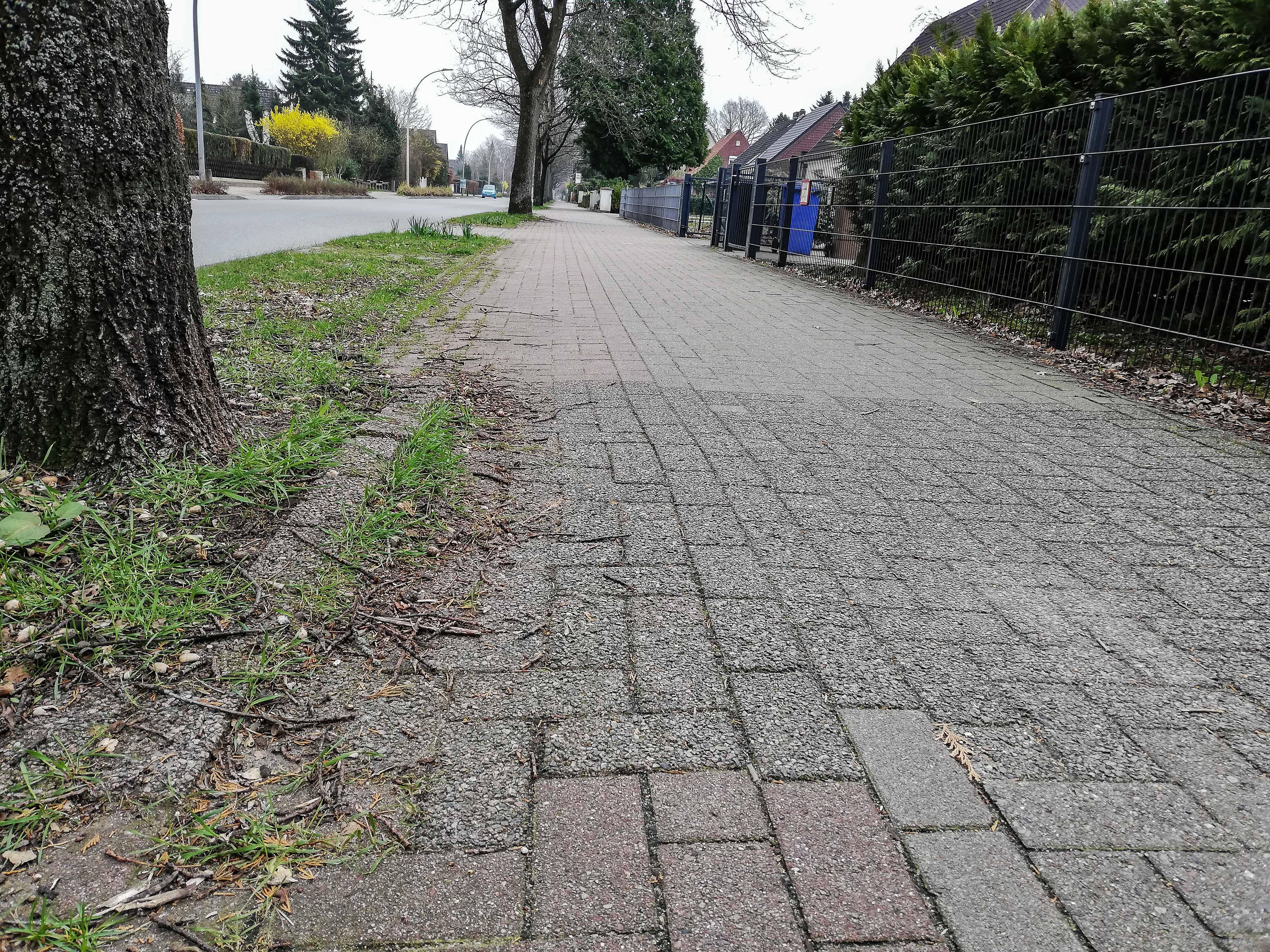 etwa 30 cm breiter Radweg in der Friedrich-Ebert-Allee
